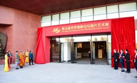 四大展览受关注 第五届世界佛教论坛图片艺术展在莆田市美术馆揭幕