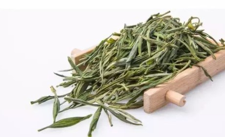 黄山毛峰丨名山名茶名天下,这个绿茶可了不得!