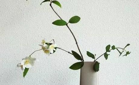 【超多组图】花与禅的不解之缘 赏析源自佛学的东方禅意插花