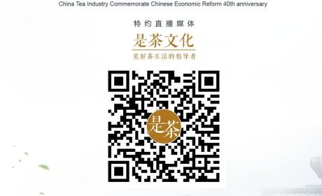 有热度!2018深圳秋季茶博会直播连连看 带你见证年度收官盛会