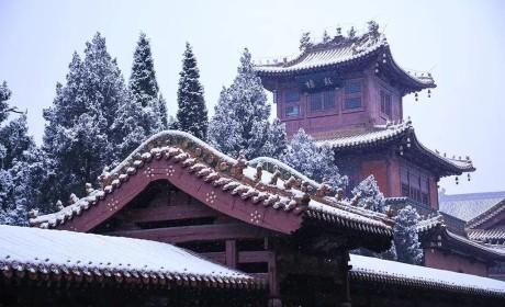 不惧严寒 狂心顿歇 冬季禅七这个禅门传统到底有何魅力