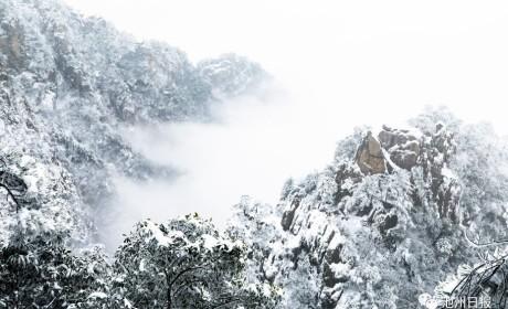来看美景 | 一场雪,九华山成了水墨画,童话一般……