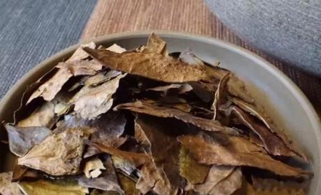 六堡茶丨可以喝的古董:一半是茶,一半是药
