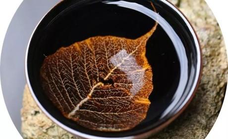 木叶天目丨一片树叶的传奇:1200℃没有灰飞烟灭,还浴火重生了!