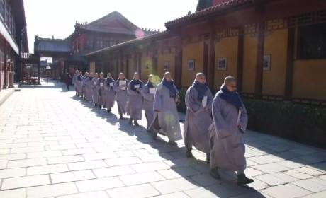 公告   河北省佛学院女众部2019年春季招生简章