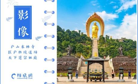 东林寺新春重磅纪录片《思归》:山水间持戒念佛 安顿游子漂泊的心