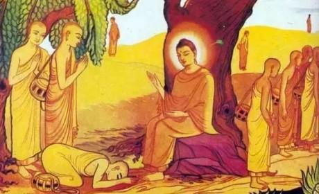 收百岁老人为弟子 留下最后的教诲 佛陀涅槃前有哪些动人故事?