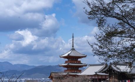 杭州佛教围棋交流中心赴日本进行围棋文化交流圆满成功