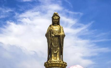 不开悟,不闭关!在普陀山闭关的高僧告诉你这是怎样的体验