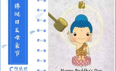 难得一遇!母亲节&佛诞日双节快乐 来了解佛陀与母亲的感人故事