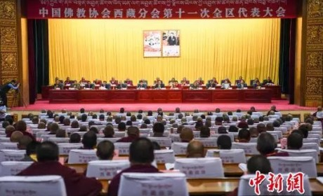 十一世班禅额尔德尼·确吉杰布当选中国佛协西藏分会理事会会长