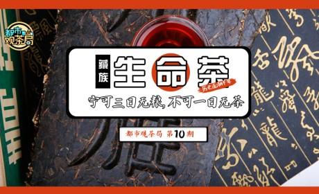 都市观茶局10丨藏茶:茶马古道的千年茶香,转身成为都市新宠