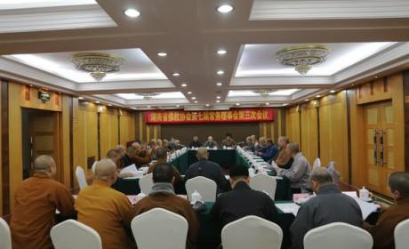 湖南佛教协会第七届常务理事会第三次会议在长沙召开 圣辉大和尚作重要讲话