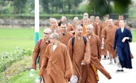 """不误农时插秧忙 湖南佛学院坚持佛教以""""农禅并重""""为特色的中国化方向"""