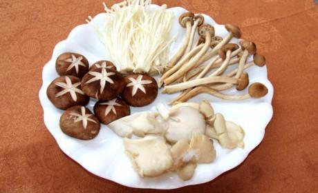 素食丨蘑菇大家族 营养各不同
