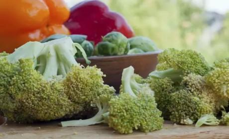 素食丨冬季来临,提高免疫力这5种食物不可少