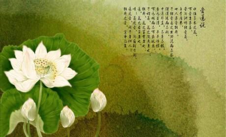 禅解《爱莲说》: 莲花是因也是果