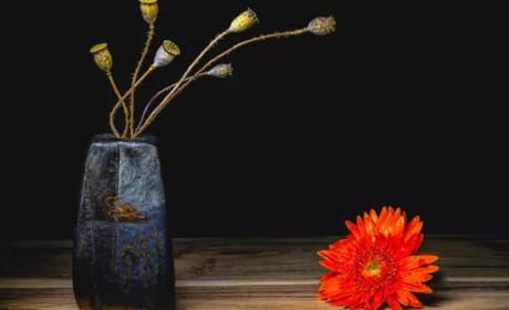 攻略丨关于插花花材挑选,请收下这份进阶宝典
