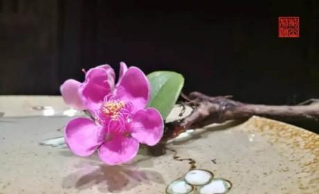 中式插花:以花传情,借花明志