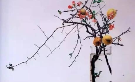 道法自然:人文插花里独特的花道美学