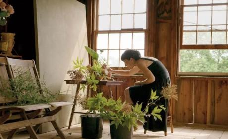 窥看新时代花艺:当代艺术、传统花道与FREAKEBANA
