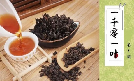 """武夷岩茶丨火火火!身价高、本领强、变化多,堪称茶中""""独孤九剑""""!"""