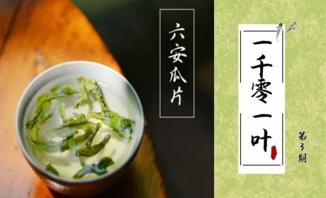 六安瓜片丨中国十大名茶之一 慈禧太后一辈子的膳食清单