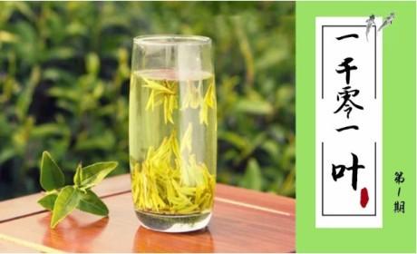 """西湖龙井丨""""你是朕一辈子最爱的茶"""" 乾隆帝心中的白月光"""