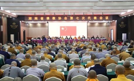 湖南省佛教协会召开第七次代表会议 圣辉法师再次当选会长