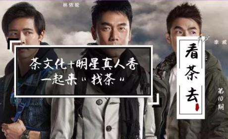 看茶去丨茶文化+明星真人秀综艺,《人民日报》喊话去看!