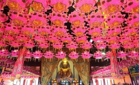 活动预告│跨年倒计时,一起来看南京鸡鸣寺跨年安排