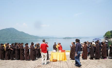 佛诞日前夕的放生!安徽三祖禅寺举行祈福放生法会