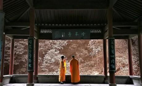 寻味灵隐寺!看茶道始祖皎然法师是如何完美结合茶禅境界