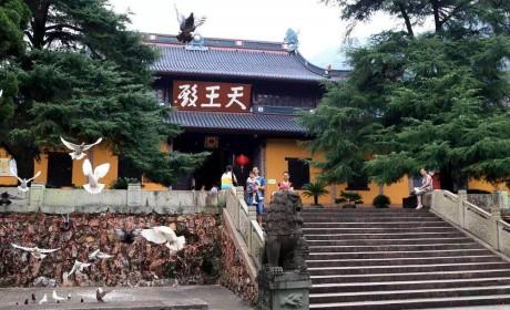 台风侵袭下屹立的天童禅寺 居然有这么多有趣的历史