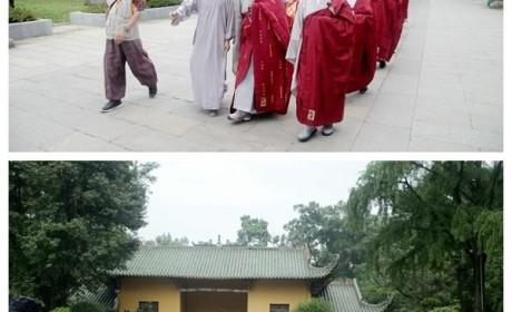 韩国曹洞宗参访团到南华禅寺交流学习 传正大和尚亲自接待