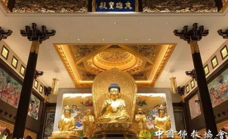 """中国佛教代表团出席新加坡佛教居士林""""三庆""""典礼活动"""