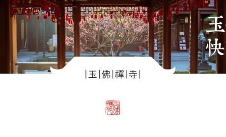 从十方来,到一线去!上海玉佛禅寺从海外筹集的第二批医疗物资凌晨抵沪