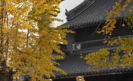 宁波七塔禅寺捐出各类医用口罩8000个