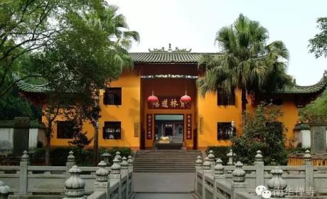 南华禅寺向疫区捐赠防控资金共50万元善款