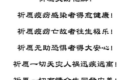 抗控新型冠状病毒肺炎疫情 庐山东林寺发出第三批援助
