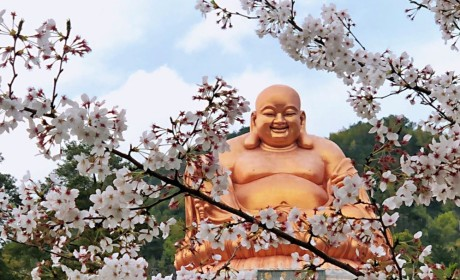 四必须!宁波雪窦山资圣禅寺2020年6月2日起恢复开放