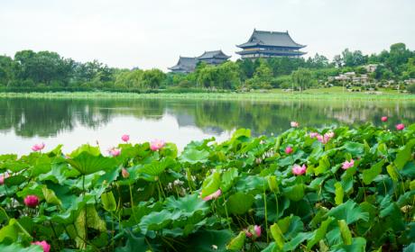 江苏佛学院寒山学院发布2021年秋季招生简章