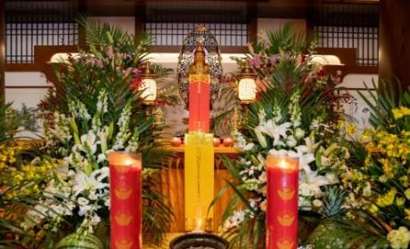 愿难者安息,生者康宁 | 大陆佛教界清明为台铁遇难同胞祈福回向