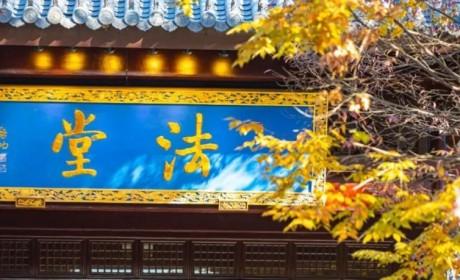 江苏佛学院寒山学院第八届在家众佛学培训班招生简章