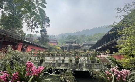 峨眉山上的五座比丘尼寺院(图)